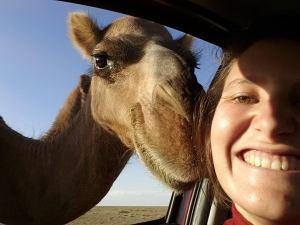 julie camel