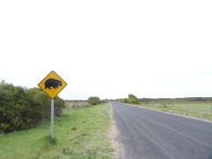 Sur la route entre Adélaide et Melbourne